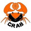 Basket : CRAB Château-Renault Association Basket